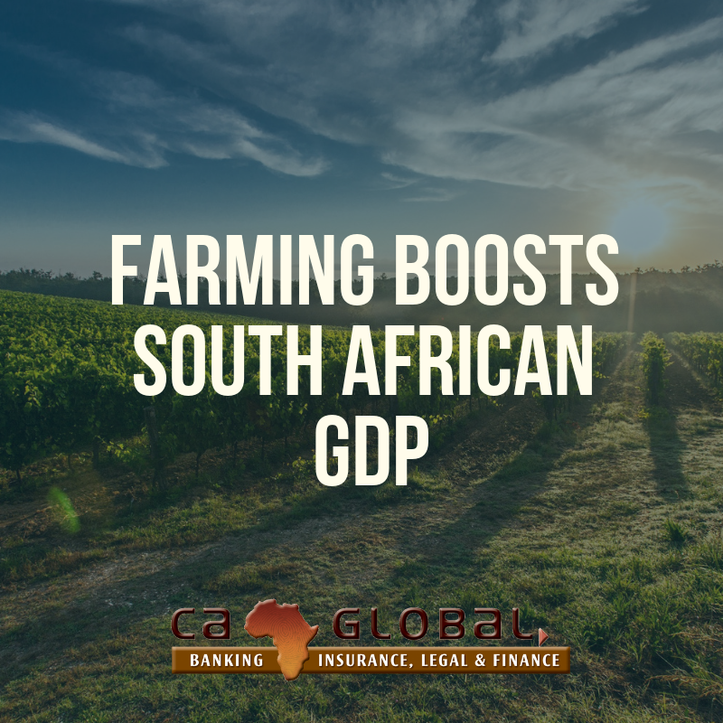Farming boosts South African GDP